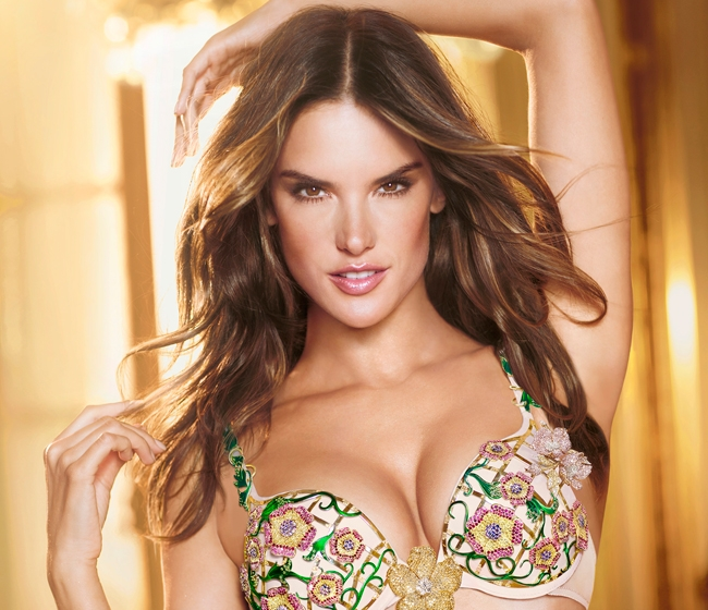 Alessandra Ambrosio Net Worth