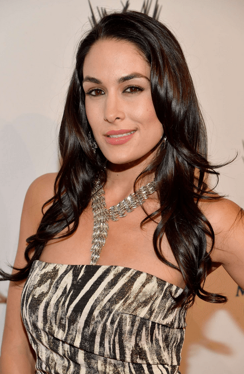 Brie Bella Net Worth