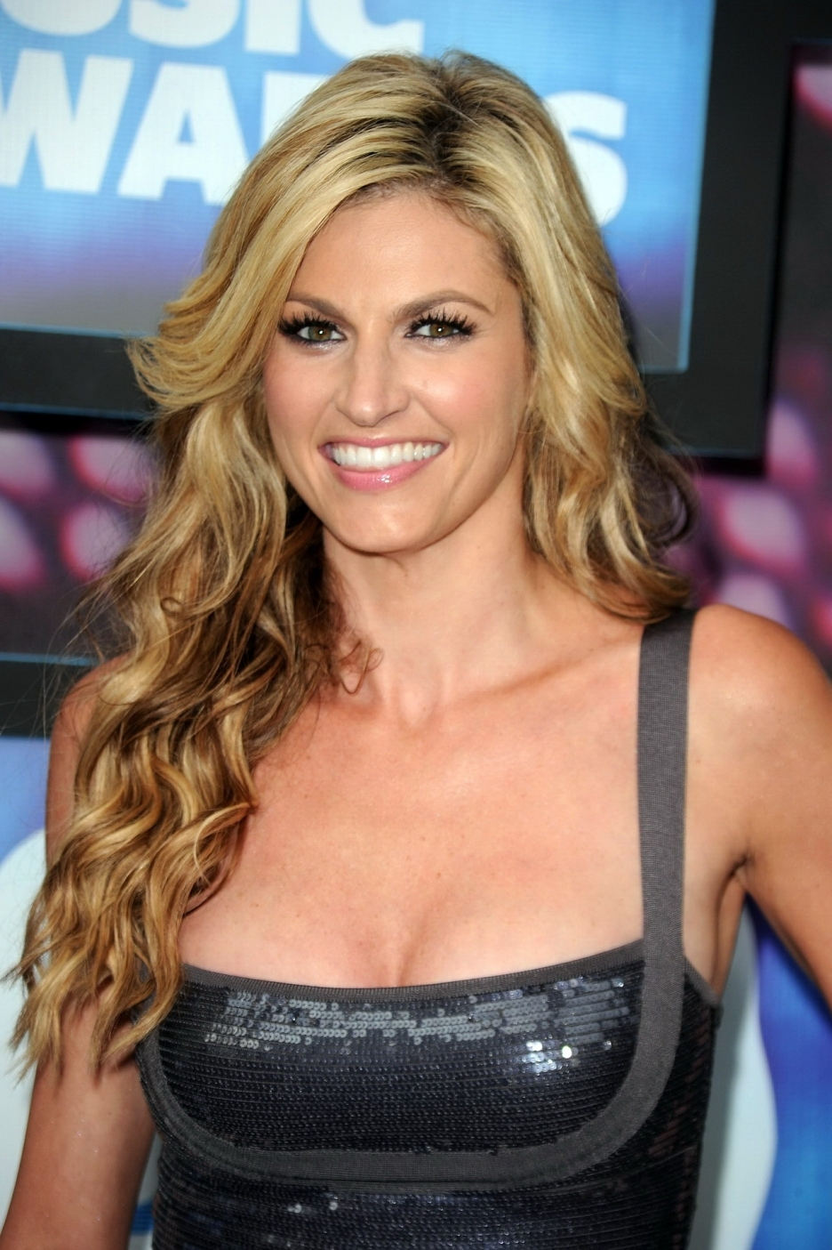 Erin Andrews naked (91 foto), hot Topless, Twitter, cameltoe 2020