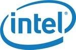 Intel Net Worth