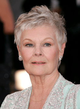 Judi Dench Net Worth