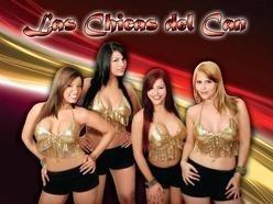 Las Chicas del Can Net Worth
