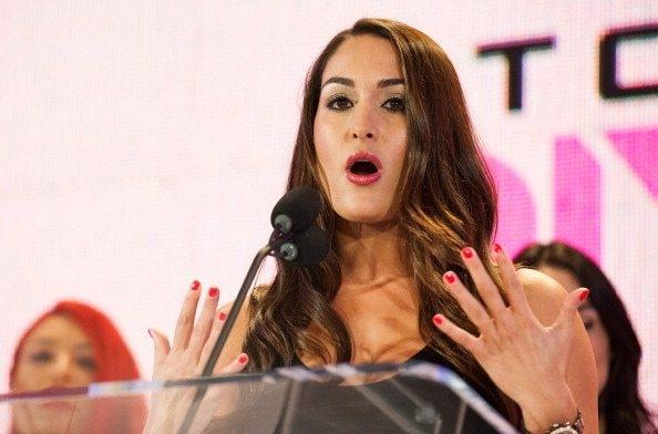 Nikki Bella Net Worth